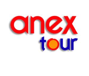 Anex лого